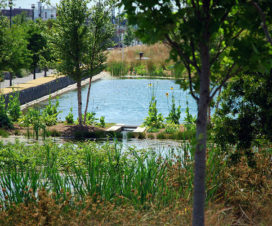 birmingham-alabama-parks