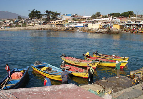 los-vilos-beach-chile