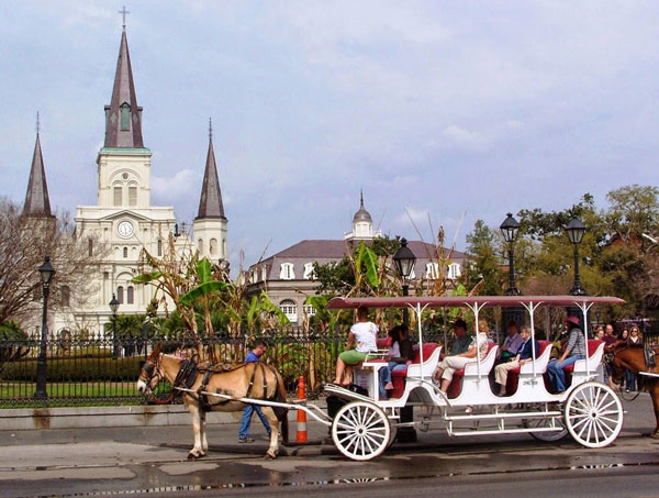 new-orleans-sight-seeing